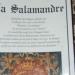 Salamandre 2